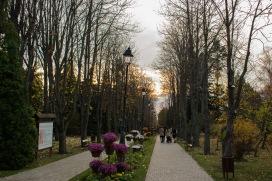 Ionuț Teoderașcu-0018