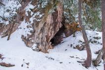 Peștera Puturosu_Ionuț Teoderașcu-18