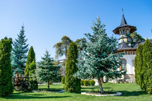 Manastirea Bujoreni_Ionut Teoderascu-21